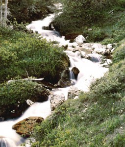 Trapper Creek Cascasde in Beaverhead County, Montana.