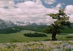 Vipond Park in Beaverhead County, Montana.
